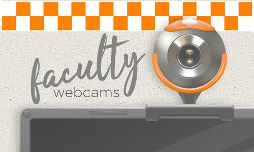 webcam image on computer