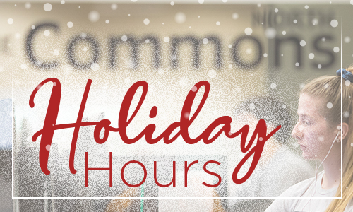 Holiday Hours article image