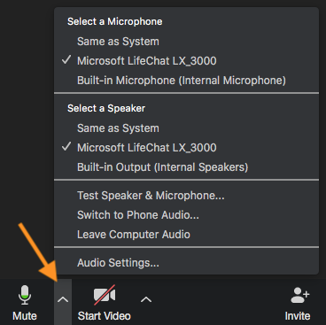 image of Zoom audio check